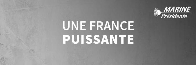 mlp_twittercover_francepuissante